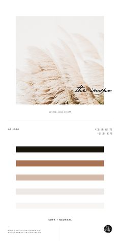 neutral color palette inspiration — Creative brands for creative people // Akula Kreative Beige Color Palette, Bedroom Colour Palette, Brown Color Schemes, Neutral Colour Palette, Creative Brands, Creative People, Website Color Palette, Monochrome Color, Grey And Beige