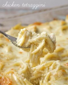 Substitute left over turkey - Easy and delicious Cheesy Chicken Tetrazzini - Chicken and pasta in a creamy sauce with lots of flavor - a family favorite dinner meal! Pasta Dishes, Food Dishes, Main Dishes, Chicken Tetrazzini Recipes, Chicken Tetrazinni, Turkey Tetrazzini Recipe Rachel Ray, How To Cook Chicken, Food Videos, Salads