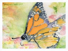 5 Blank Note Cards  Monarch Butterfly  by SycamoreWoodStudio