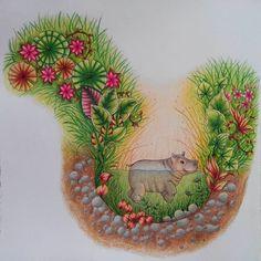 Little hippo is really cute Wonderful picture #magicaljungle #magicaljunglecoloringbook #johannabasford #johannabasfordmagicaljungle #adultcoloring #adultcoloringbook #coloringforadult #coloringbookforadult #cololoring #prismacolor #prismacolorpremier #hippo #antistresscoloringbook