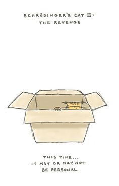 schrödinger's cat II: the revenge Physics Jokes, Chemistry Puns, Science Jokes, Science Facts, Cat Jokes, Nerd Jokes, Nerd Humor, Theoretical Physics, Quantum Physics
