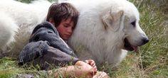 """Tornano """"Belle & Sebastien"""", a Natale nuove avventure per l'orfanello e il pastore dei Pirenei"""