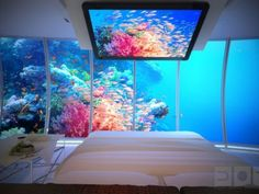 Water Discus Hotel - now that's a view from bed!- love it..but would think Jaws would come thru glass lol