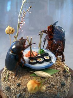 A pair of sophisticated modern maybugs enjoying sushi. One of Lisa Wood's brilliant insect dioramas.