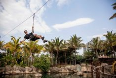 Rope Course in KwaZulu-Natal | Best Family Activities | uShaka - Dirty Boots Adventure Activities, Family Activities, Ropes Course, Kwazulu Natal, Tourism, Things To Do, Explore, Park, World