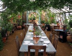 Petersham Nurseries Cafe by sue_n_alex, via Flickr, how neat would it be to have sky lights and just grow everything up the beams in your kitchen or dining room