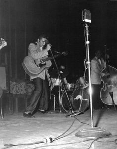 Scotty, Elvis, DJ and Bill onstage at the Minneapolis Auditorium - May 1956 Photo source Cristi Dragomir Scotty Moore, Sun Records, Young Elvis, Album Sales, Psychobilly, Graceland, Auditorium, American Singers, Elvis Presley