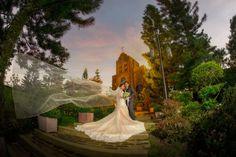 Vignette Photography, Vignettes, Photographers, Fair Grounds, Weddings, Fun, Pictures, Photos, Wedding