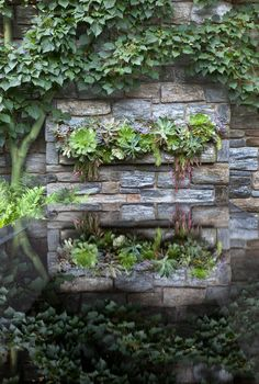 A mantle of succulents is relected in the Ruin Water Table. Chanticleer, US