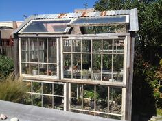 Back in General Store, San Francisco unveil their backyard garden and patio featuring a greenhouse by Jesse Schlesinger. Old Window Greenhouse, Build A Greenhouse, Greenhouse Growing, Greenhouse Ideas, Greenhouse Wedding, Cheap Greenhouse, Backyard Greenhouse, Plant Watering System, Greenhouse Supplies