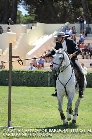 working equitation - Google Search