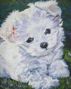 Image result for maltese art