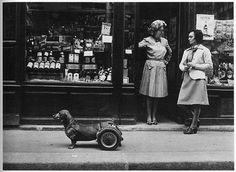photo by Robert Doisneau  Awesome weiner dog wheels