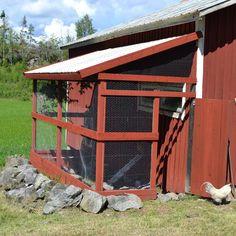 Pergola, Outdoor Structures, Ducks, Garden, Animals, Chicken, Instagram, Board, Sun
