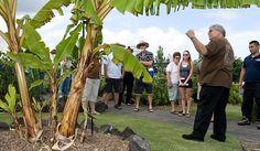 Imiloa, Hilo Attractions   Native Garden