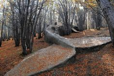Statue d'une baleine en plein milieu du bois, Argentine