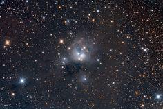 46 отметок «Нравится», 1 комментариев — Linda's Favourite (@lindasfavourites) в Instagram: «Young Suns of NGC 7129 #young #suns  #follow #planet #instafollow #followme #photooftheday #amazing…»