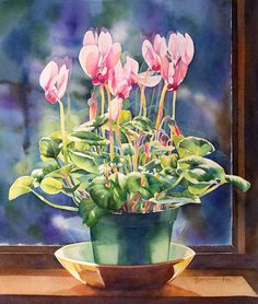 """""""Sunlit Cyclamen"""" water-color by Barbara Fox Memories of my childhood, Cyclamens graced our Toronto apartment windowsills and brighten the spring days before Easter."""