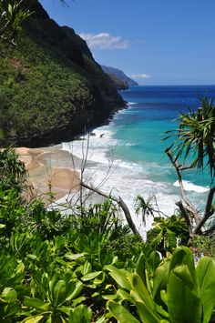 Kauai...does it get any nicer? World Financial Group makes it happen sending over 300 families to Hawaii every year. The opportunity awaits you.