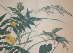 p125-hoitsu--mint-and-cassia-10184.jpg (744×548)