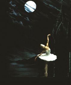 Swan Lake one of my fav ballet
