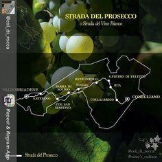 Condividiamo informazioni #tksto #col_di_rocca #wine #prosecco #valdobbiadene #vigneti #areadocg