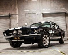1967 Ford Mustang fastback Shelby GT 500