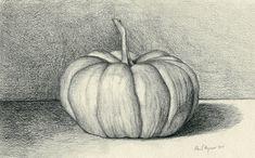 Pumpkin - Graphite Drawing