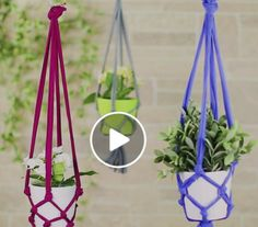 Terrific Images tshirt Plant Hanger Tips Macramé, the art of knotting rope, is really a trendy way to produce your own personal boho chic in Hanger Images Plant Terrific Tips tshirt Hanger Crafts, Diy Crafts, Pot Hanger, Old T Shirts, Diy Old Tshirts, Cool Plants, 5 Minute Crafts, Instagram, Boho Chic