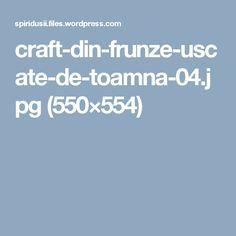 craft-din-frunze-uscate-de-toamna-04.jpg (550×554)