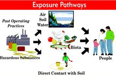 Exposure Pathways - Image from ATSDR