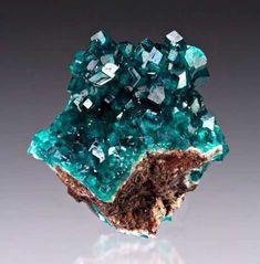Gems, Minerals, and Crystals Natural Crystals, Stones And Crystals, Natural Gemstones, Gem Stones, Minerals And Gemstones, Rocks And Minerals, Crystal Aesthetic, Beautiful Rocks, Rare Gems