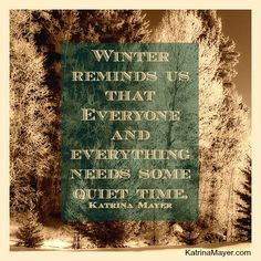 Winter reminds us that everyone and everything needs some quiet time. I guess this is why I love winter! Quotable Quotes, Me Quotes, 2015 Quotes, Pain Quotes, Nature Quotes, Strong Quotes, Attitude Quotes, Cool Words, Wise Words