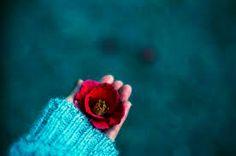 Resultado de imagem para fotos de pessoas com flores tumblr