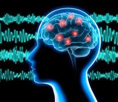 Neuroprotección ante la epilepsia en las demencias progresivas rápidas