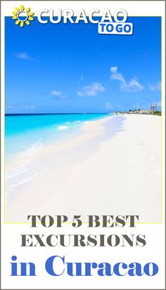 Top 5 best excursions in Curacao  #curacao #tips #caribbean #todo