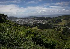 Wandern ist in Neuseeland ein beliebtes Hobby. Hier zeige ich euch, wie herrlich das auch mitten in der Stadt sein kann. Und zwar im schönen Wellington. Mountains, Nature, Travel, Outdoor, Middle Earth, New Zealand, Travel Inspiration, Hiking, City