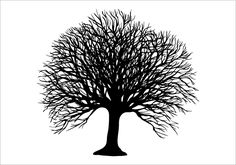 Winter Tree Silhouette Graphics Silhouette Graphics