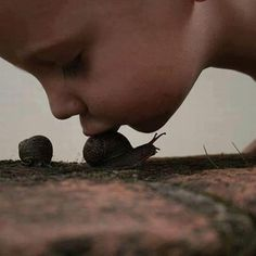 http://viverecrueltyfree.ning.com/forum/topics/il-mistero-dei-bambini-indaco
