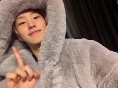 Wonwoo, Seungkwan, Jeonghan, Satan, Cute Boys, My Boys, Pretty Boys, Kpop, Oppa Gangnam Style