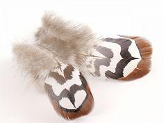 Chocolate brown Venery reeves pheasant plumage feathers