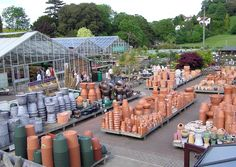 images garden centers garden centres garden centres are stores who might want to visit2236 x 1590 686 kb jpeg x