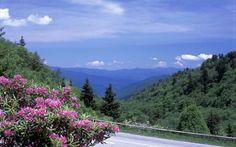 The Route: 33 miles.With more than 270 miles of roadways crisscrossing the Smokies, you certainly ha... - Russell Kord / Alamy