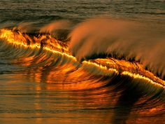 Golden Wave at Sunset, Puerto Escondido, Mexico, posted via allbestwallpapers.com
