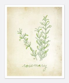 For my mommy, Rosemary: What a wonderful mother you have. I picked her especially for you. I send my blessings every day and remember that I love you very much. By the way, I'm easy to find, I am wherever there is love. Love, God…