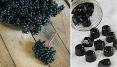 Boost your immune system and heal your gut with my homemade elderberry syrup and elderberry gummy snacks - great for kids! Elderberry Gummies, Elderberry Recipes, Elderberry Syrup, Homemade Jello, Gelatin Recipes, Healthy Snacks To Make, Fruit Snacks, Berries, Treats