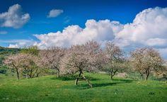 Clouds, Urban, Nature, Outdoor, Outdoors, Naturaleza, Outdoor Games, Outdoor Living, Scenery