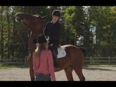 Heartland 6x11 - Blowing Smoke Heartland Episodes, Blowing Smoke, Horses, Youtube, Horse, Youtubers, Youtube Movies