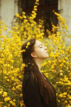 Yellow flowers by Agata Dobrzańska on 500px
