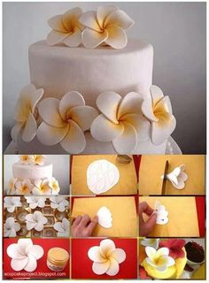 Great illustrated directions for this one. More (cake decorating frosting gum paste) How to plumeria gum paste Fondant flowers picture only Cake tutorial, yes, but i say inspiration for polymer clay as well try with 24 lb paper Icing Flowers, Gum Paste Flowers, Fondant Flowers, Sugar Flowers, Fondant Rose, Cake Flowers, Buttercream Flowers, Yellow Flowers, Cake Decorating Techniques